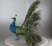 Antique musical walking Indian peacock automaton, by Roullet & Decamps